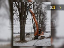 Baumalight Vertical Excavator Tree Shear with Grapple